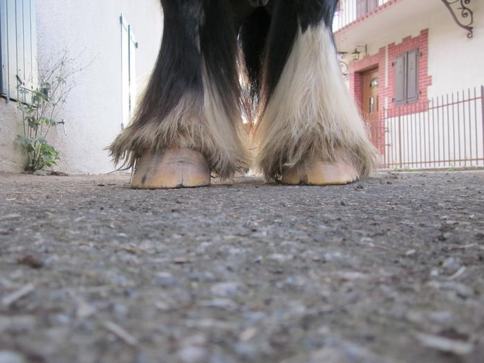 Suivis des pieds nus, c'est ici !  - Page 16 M_242197806_0