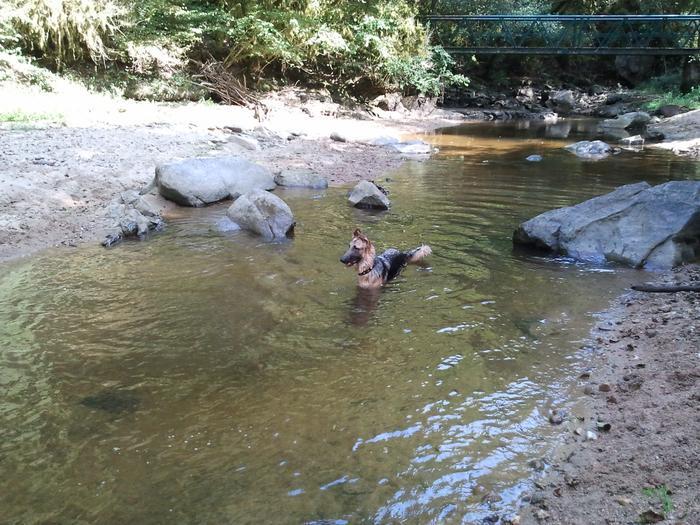 Sortie à la rivière