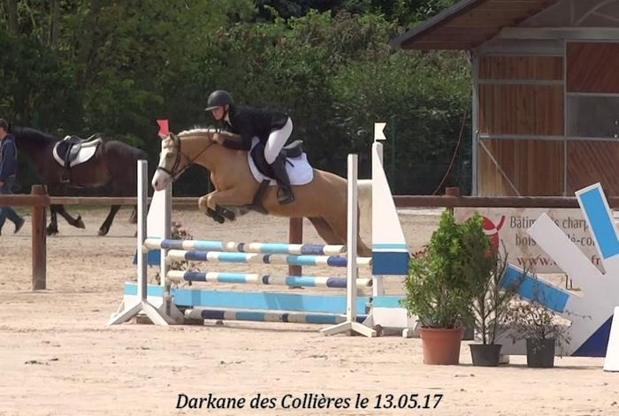 vous souhaitez faire de la compétition de CSO avec des poneys Elites M_497915652_0